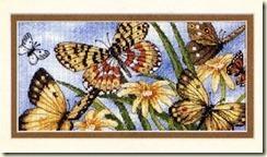 A11(6)_-_Butterfly_Vignette