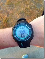 8 Mile Training Run