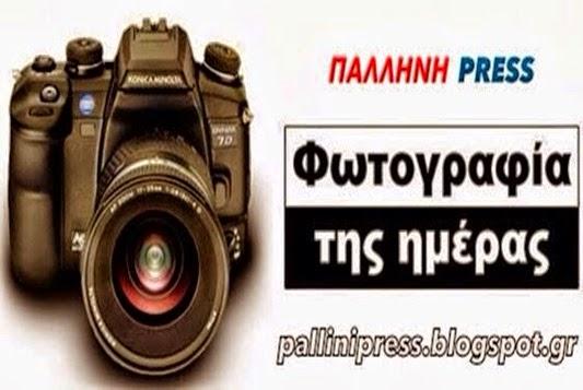 Photo 20150123123529942