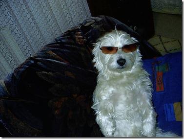 2003_11 Max mit Brille 03