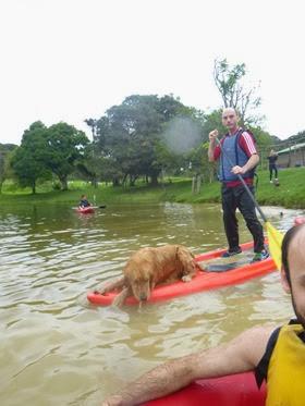Pets Adventure 15 (112)