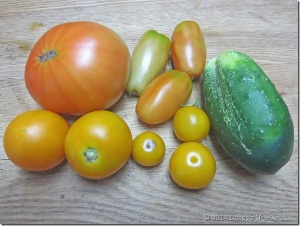 tomatoes&cuke