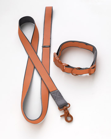 Perhaps not the funnest gift for pooch, but one that will help keep her safe and sound on evening walks. Adding reflective power to pooch's collar and lead can be life-saving...