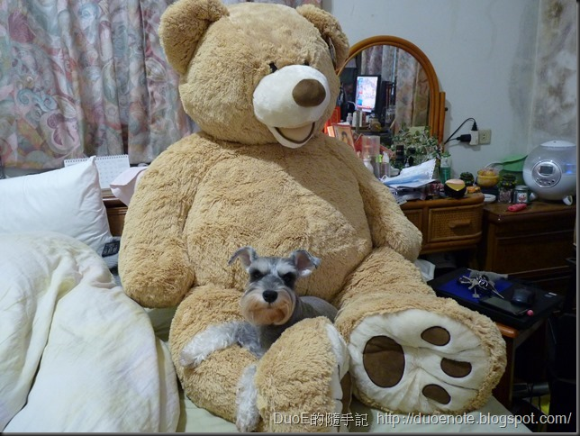 "Costco 53"" Plush Teddy Bear 尺寸"