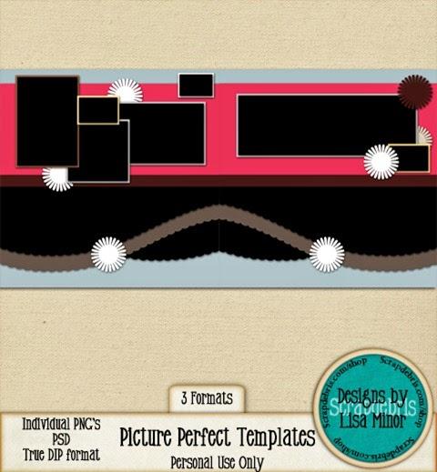 prvw_lisaminor_pictureperfect_temp