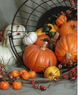 autumn decs