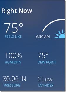100% Humidity