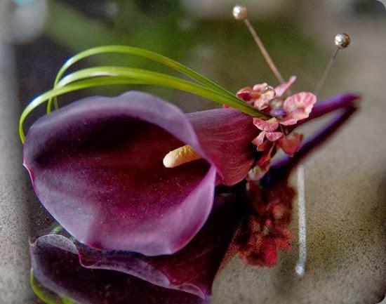 DSCF0047 bloom by anuschka