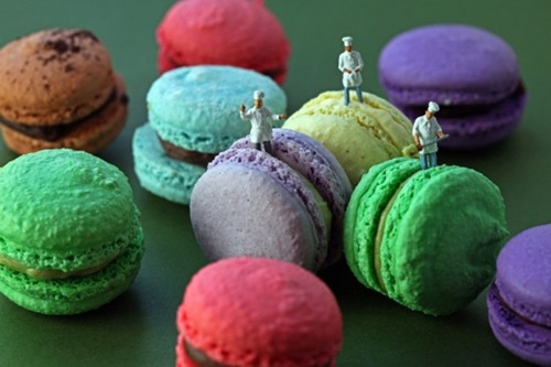 macaron bakers