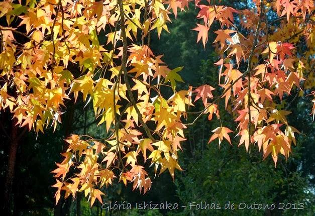 Glória Ishizaka - Outono 2013 - 75