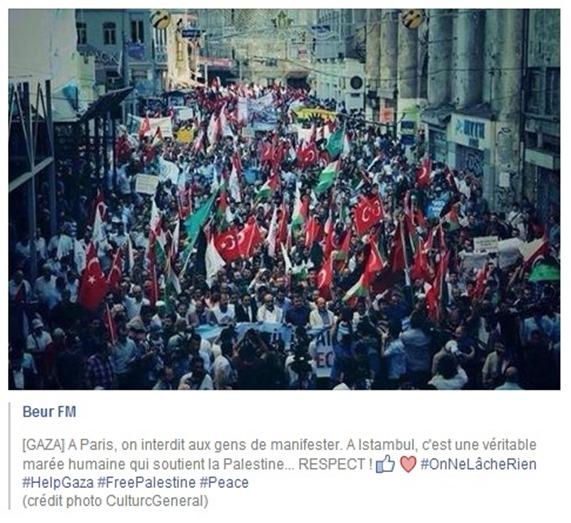 solidaritat Palestina 7