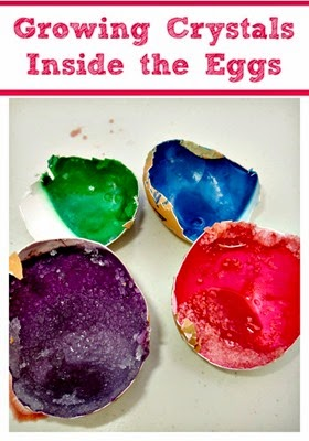 STEM Activity for kids - growing crystals inside the eggshells