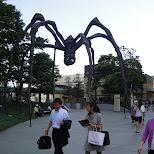 giant spider in roppongi in Tokyo, Tokyo, Japan