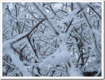 20120127_snow-ice_011