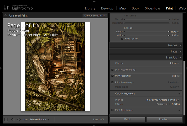 PRO-1 Printing in Lightroom 5