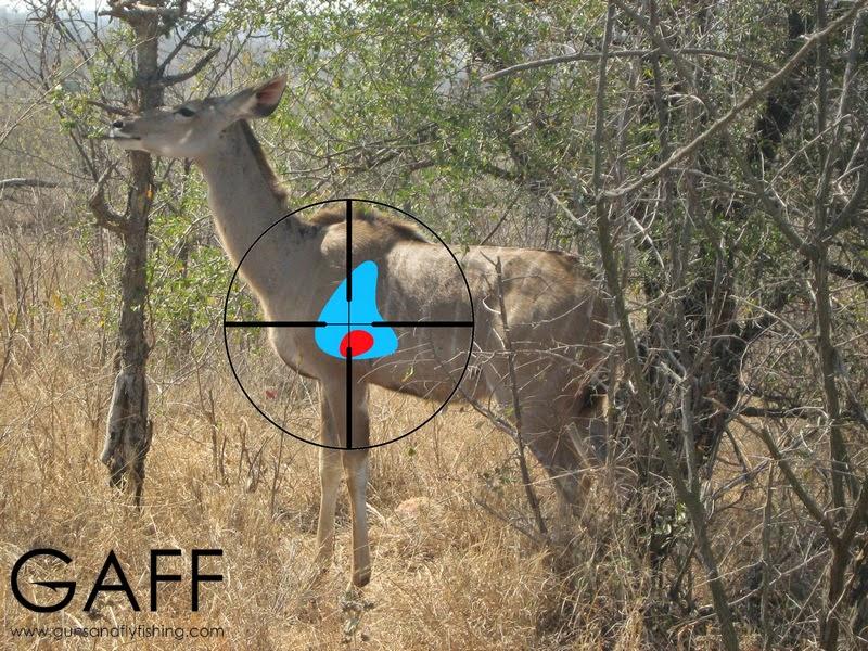 Kudu-hunting-shot-placement (2).jpg