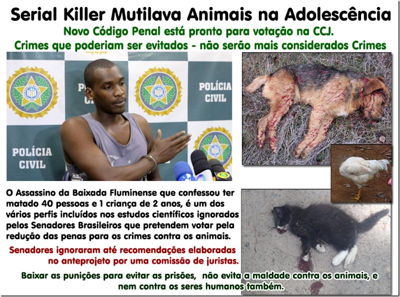 serial_killer_animais