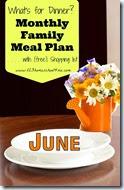 Meal Planner - june