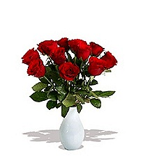 finest-bouquets-a-dozen-red-roses-giftwrap
