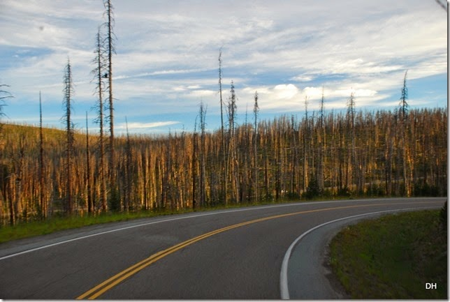 07-30-14 A Travel from E to W Yellowstone (48)