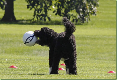 bo plays soccer