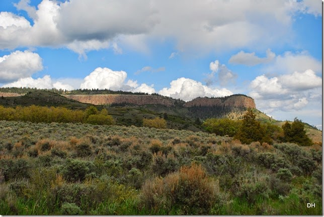 06-08-14 A Blue Mesa Dam Area (120)