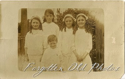 4 girls and one boy Postcard  Dorset Antiques