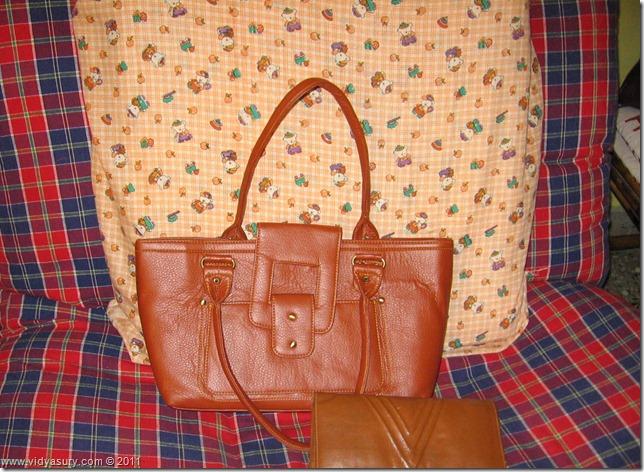 VidyaSury bag