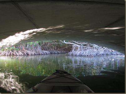 kayaking at Curry Hammock State Park, mangrove bridge
