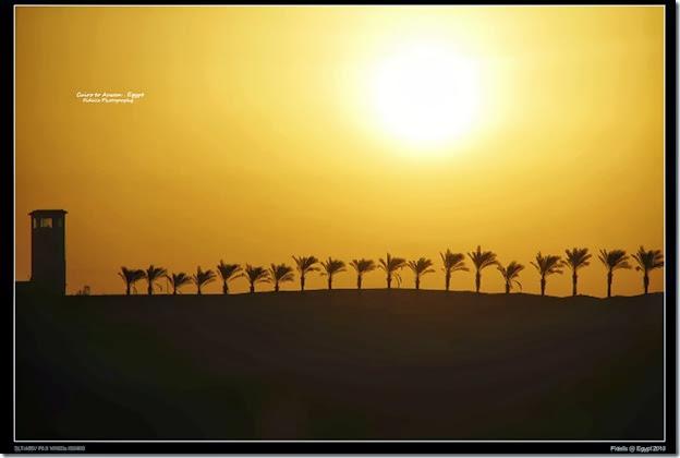 Egypt Day 11_04-2