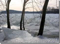 Ice on the Susquehanna River, 2/2014, by Sue Reno, Image 12