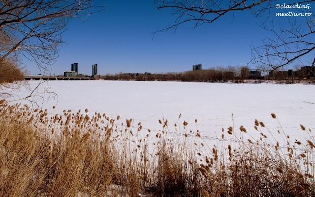 Montreal-iarna-St-Laurent-01_rw.jpg