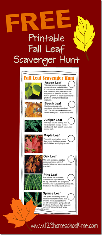 FREE Leaf Scavenger Hunt - This is such a fun nature hunt kids activities for homeschool science. Fall activity for preschool, prek, kindergarten, first grade, 2nd grade, 3rd grade