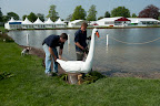 Positioning the swan on the lake ready for Grassroots day