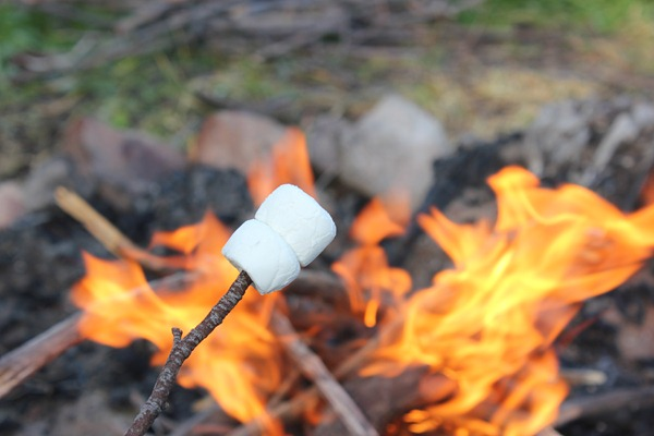 cooking with a stick over a campfire