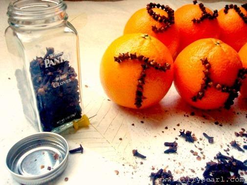 OrangeCloves5a