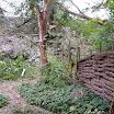 stormschade rekerdijktuin 011.jpg