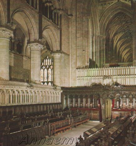 Canterbury Catt ved del coro