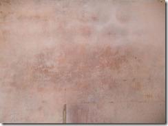 parede com mofo (6)