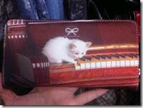 gato pianista blogdeimagenes (14)