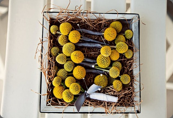 modern beach wedding yellow and grey billy ball boutonnieres heavenly blooms