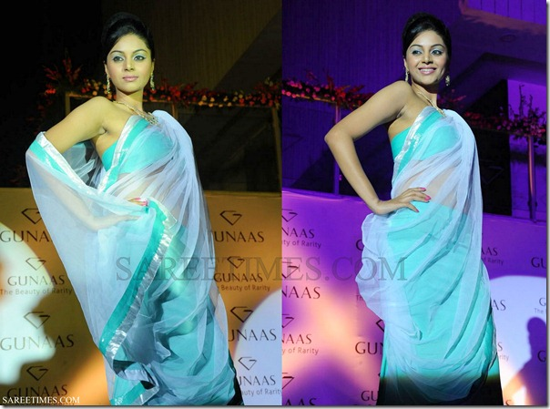 Blue_Designer_Transparent_Saree