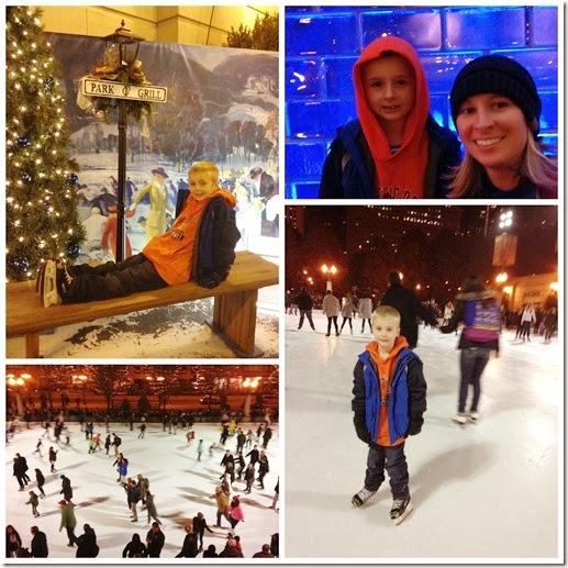 ice skate Millennium Park