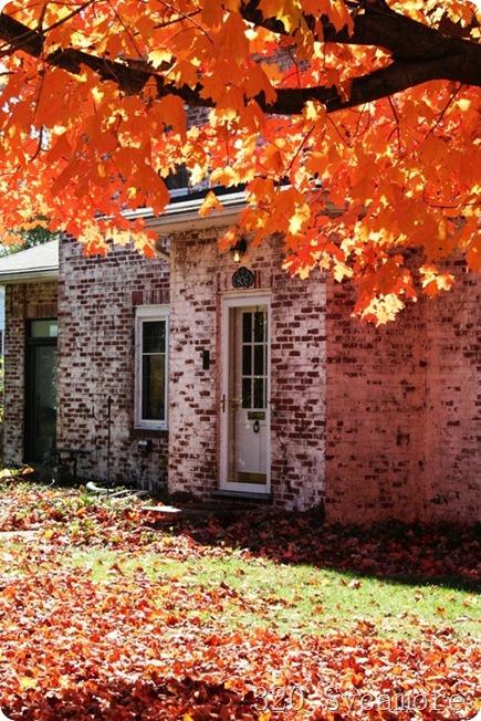 fall house 8