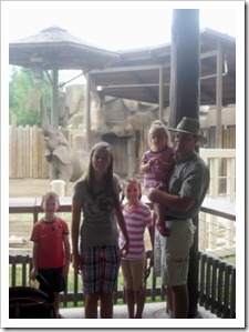 Watching the elephants at Hogle Zoo
