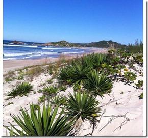 Praia da Ferrugem, Santa Catarina