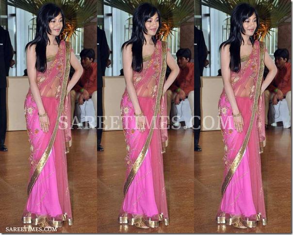 Amrita_Rao_Pink_Shimmer_Saree