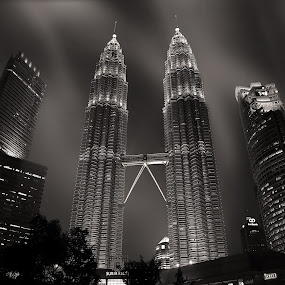 Twin Tower by 3rd eye Monster - Black & White Buildings & Architecture
