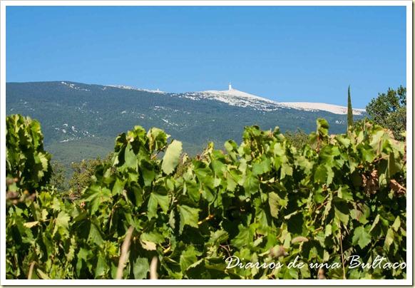 Mont Ventoux-57
