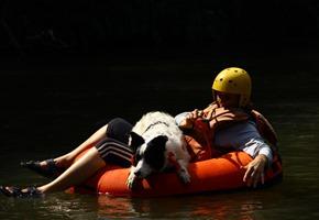 Pets 11 (65_1) (86)